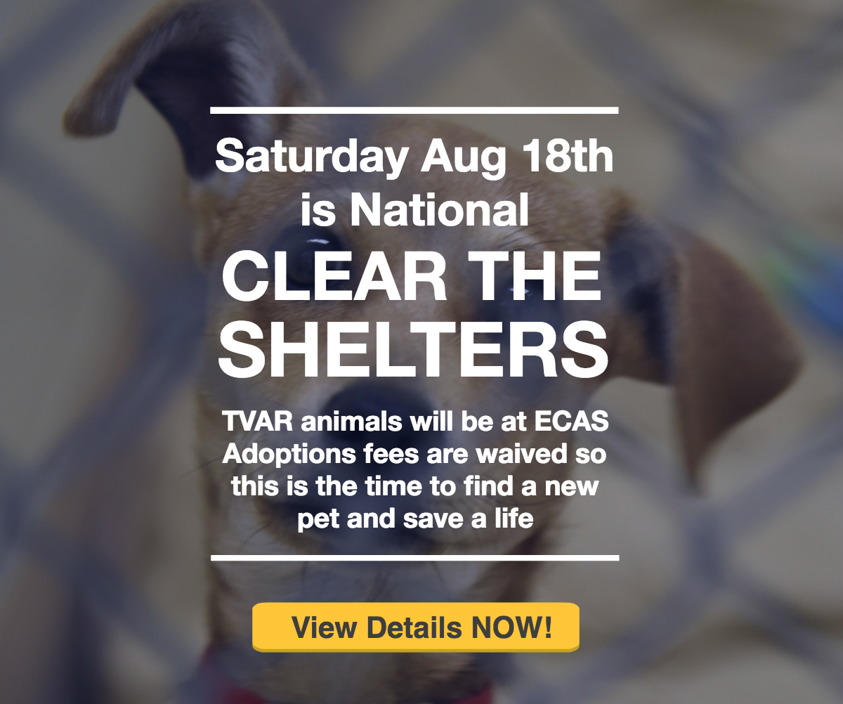 TVAR Clear the shelters